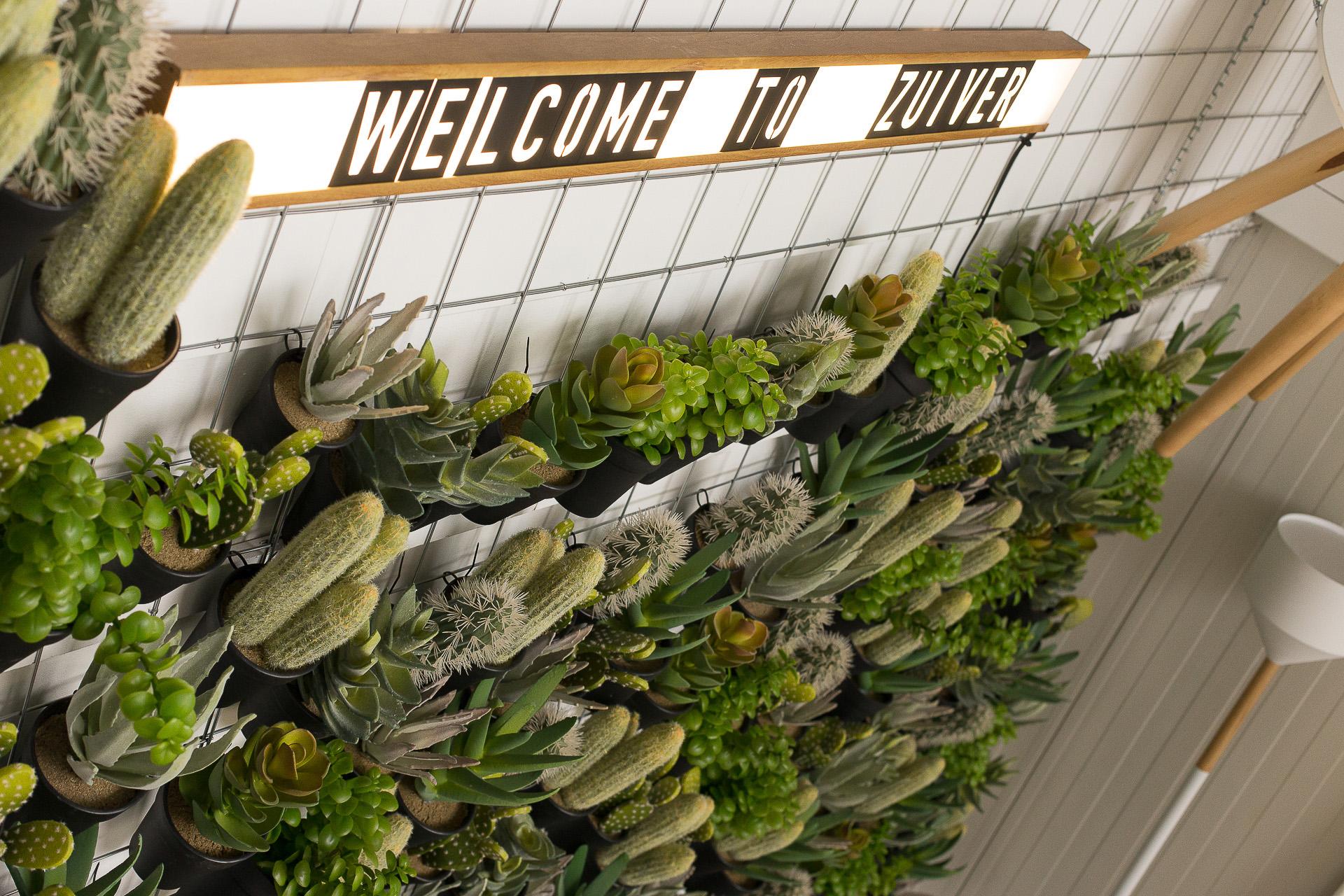Inneneinrichtung Heidelberg, Mannheim, Stuttgart - Gaffga Interieur Design - Moebel von Zuiver, Pflanzendeco